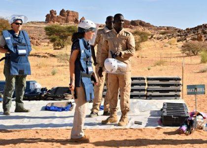 Démineurs Au Tchad